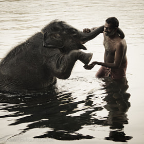 Elephant Caretaker by Joel Santos (Joel_Santos)) on 500px.com