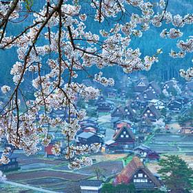 Shirakawa-go in SAKURA by MIYAMOTO Y (MIYAMOTO_Y) on 500px.com