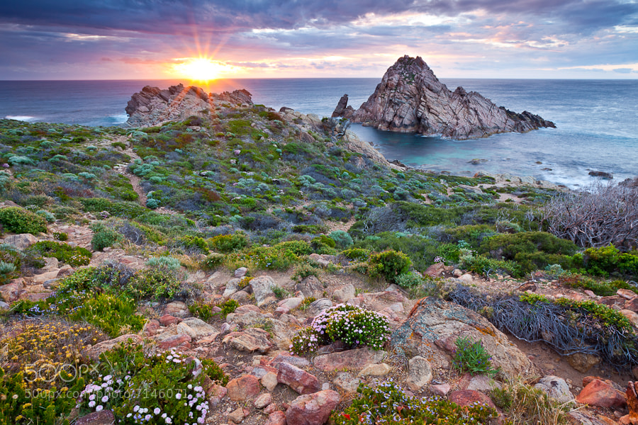 Photograph Sugar Loaf Rock by Damian Watts on 500px
