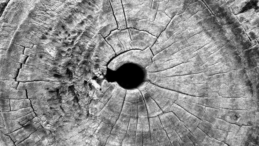 void by Nikita Upreti on 500px.com