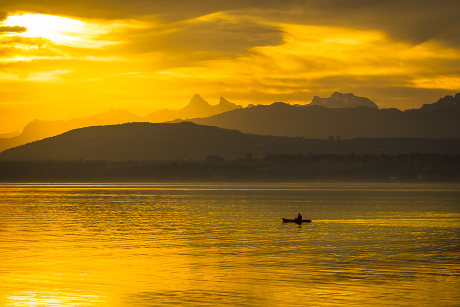 Photograph Golden Morning by Dennis Hellmich on 500px