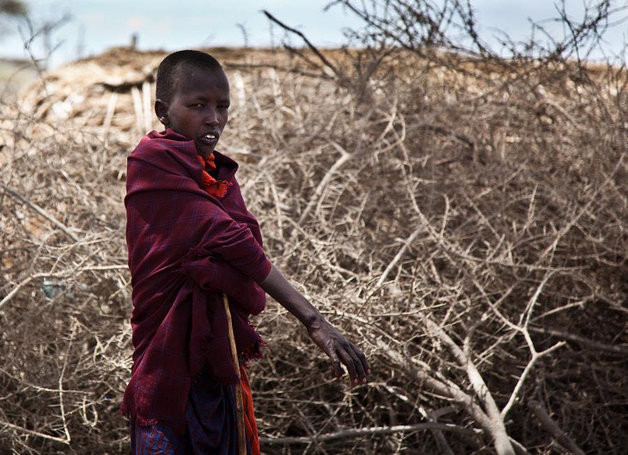Maasai XI