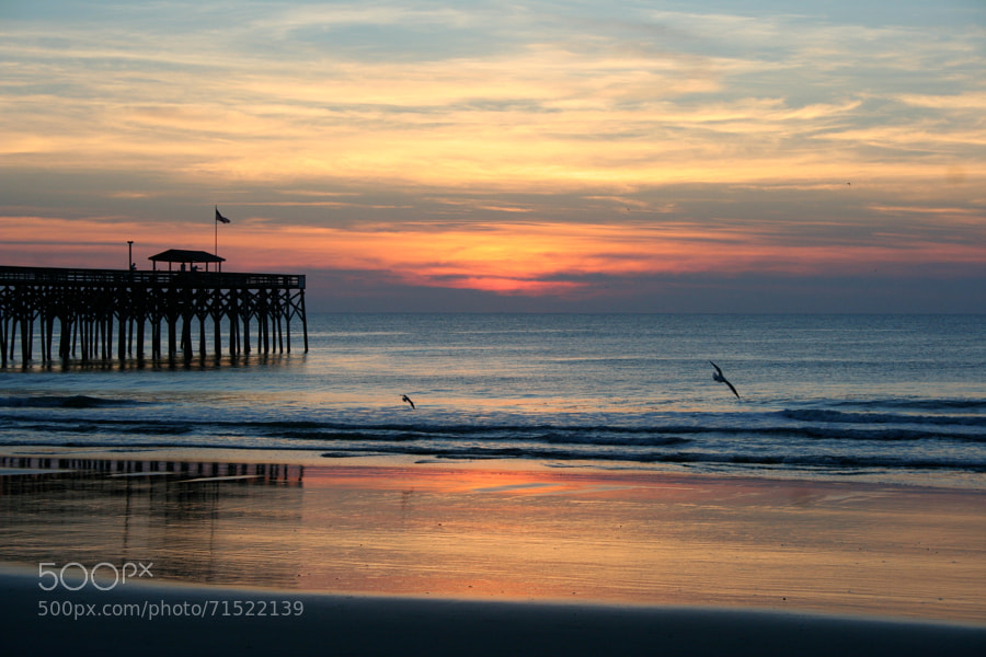 Early morning on the beach at Pawley's Island
