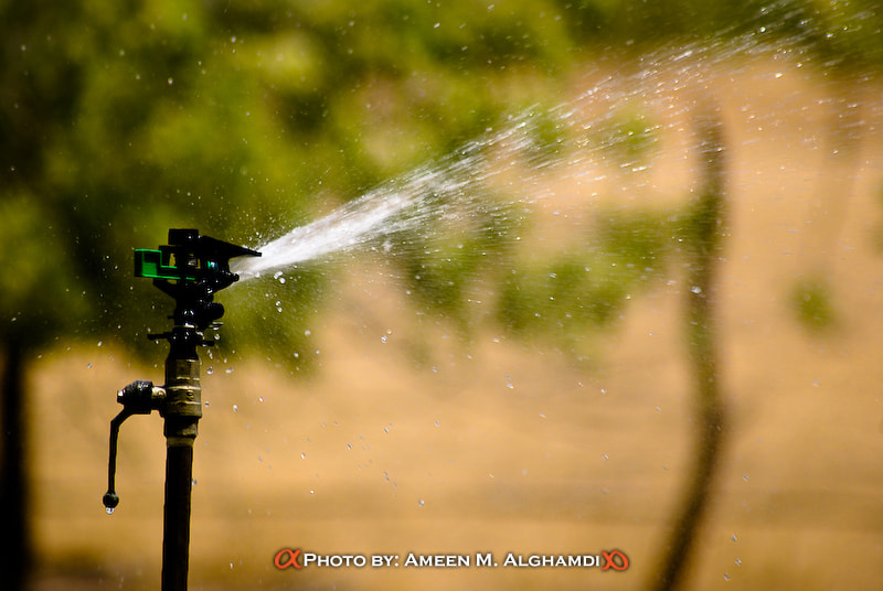 Photograph WATER by Ameen Alghamdi on 500px