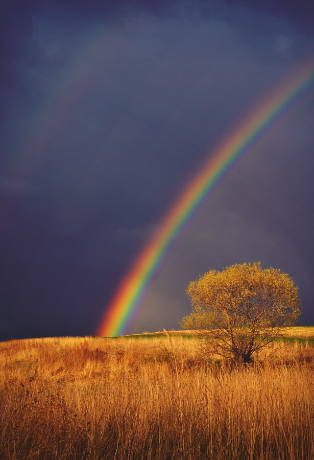 An epic rainbow by Samuel Baňas on 500px.com