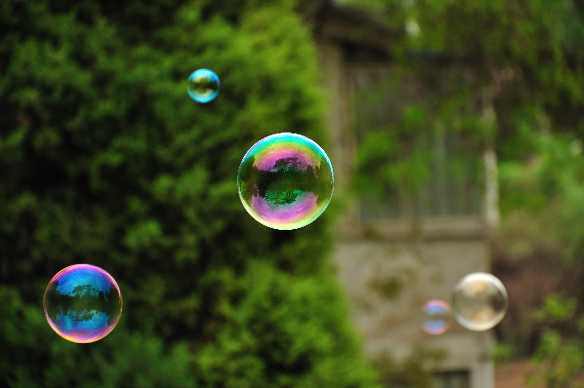Photograph Bubble by Chang Steven on 500px