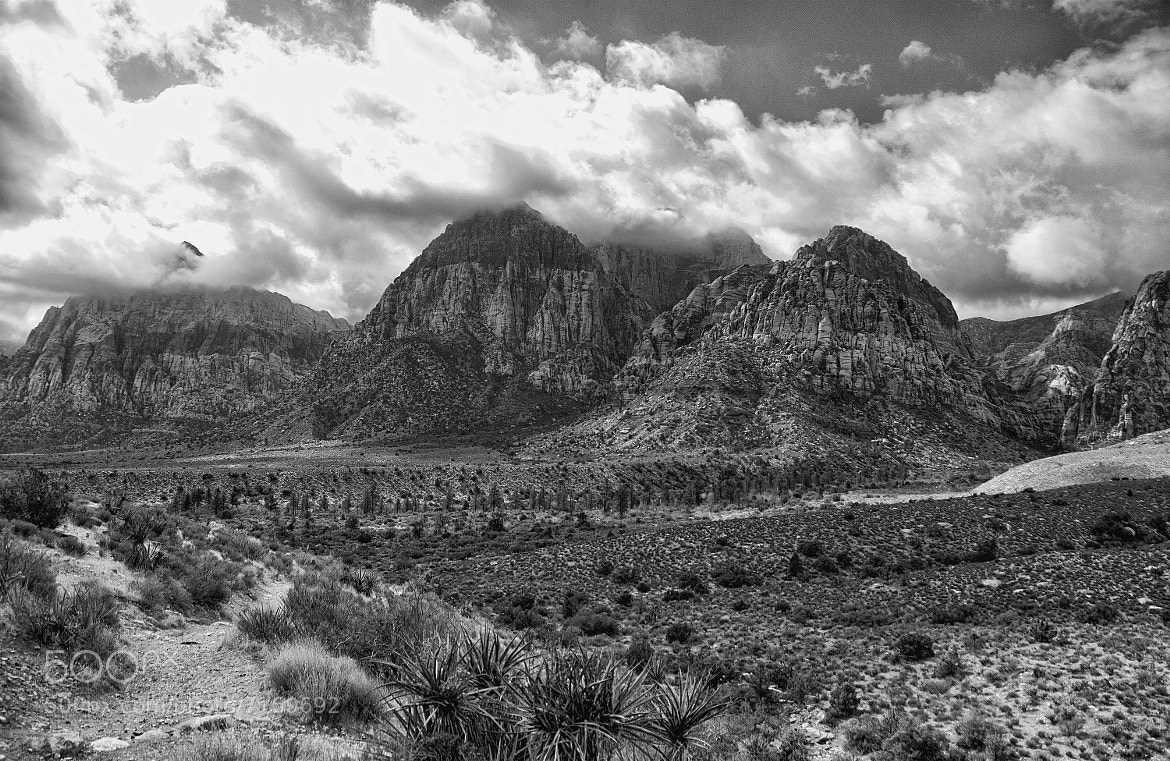 Photograph Clouds, Mountains and the Desert by Greg McLemore on 500px