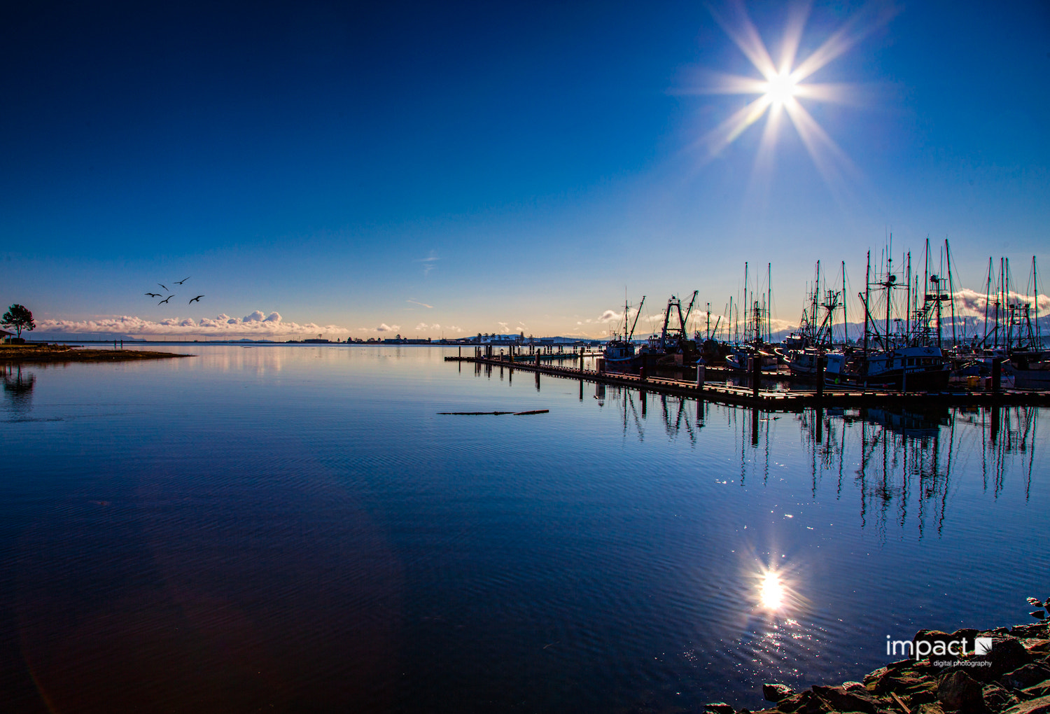 Photograph Comox Light by Mike Thompson on 500px