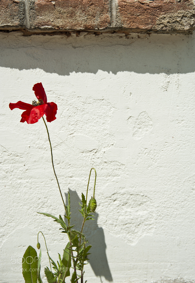 Photograph On the Wall by Luca Feliziani on 500px