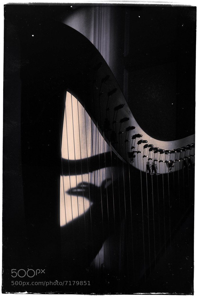 Photograph shadow harp by Christian Clim on 500px