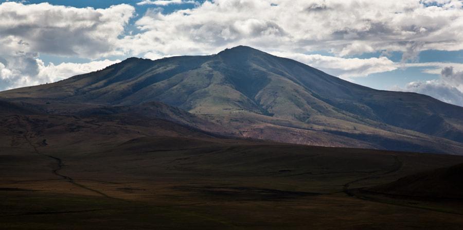 Slopes of the Ngorongoro crater