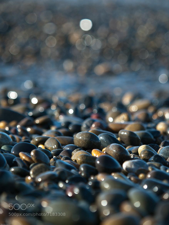 Photograph Untitled by Raj Koppula on 500px