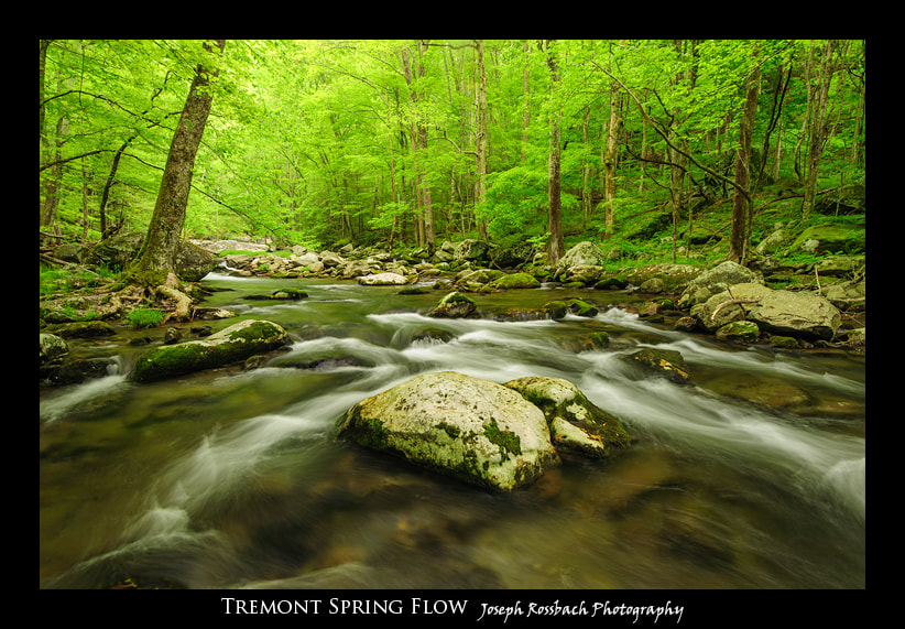 Photograph Tremont Spring Flow by Joseph Rossbach on 500px
