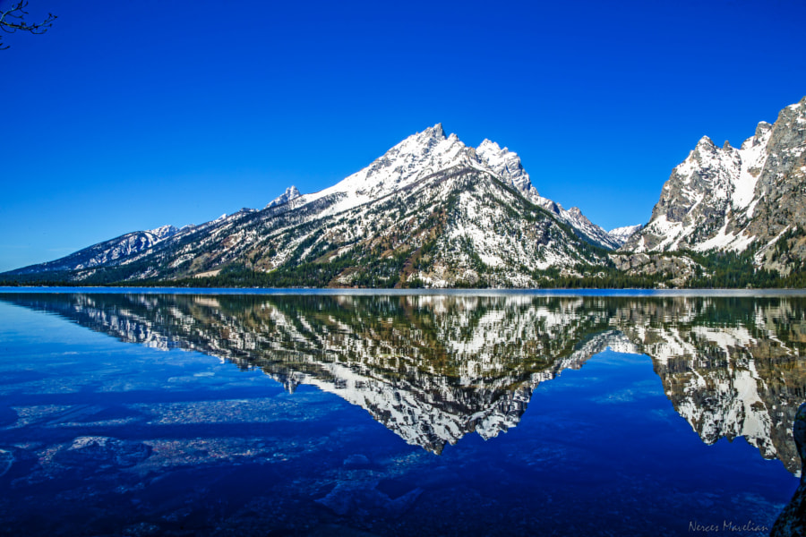 Came up on Jenny Lake in the Teton National Park where I saw this beautiful sight of The Grand Tetons reflecting.