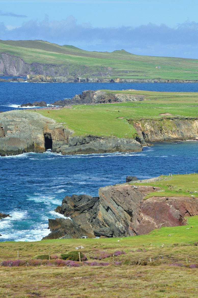 Photograph dingle peninsula by helmut flatscher on 500px