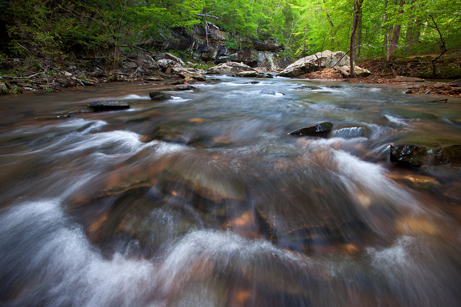 Photograph Streaming by Taylor Reed on 500px