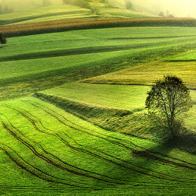 Morning by Jure Kravanja (yurko)) on 500px.com
