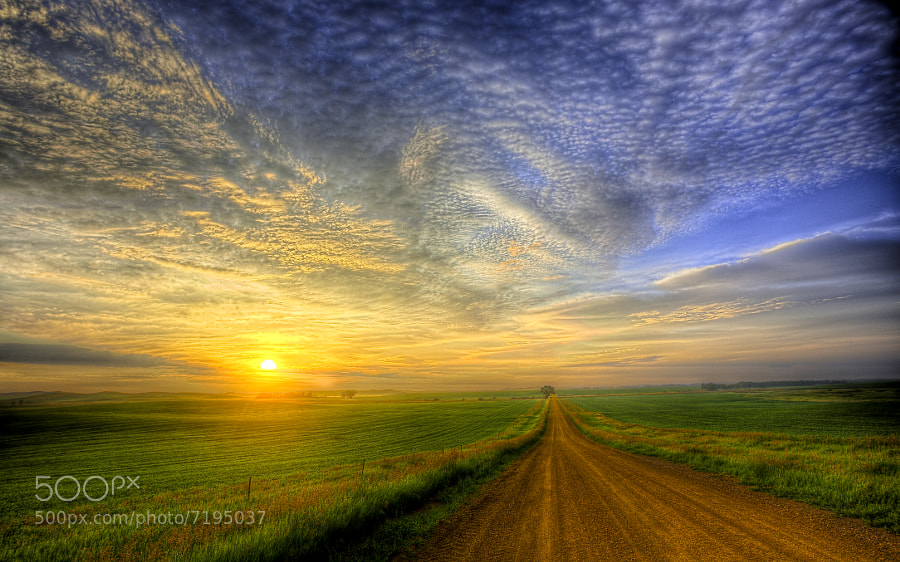 Rural (near Hebron) North Dakota sunrise from the middle of the gravel road