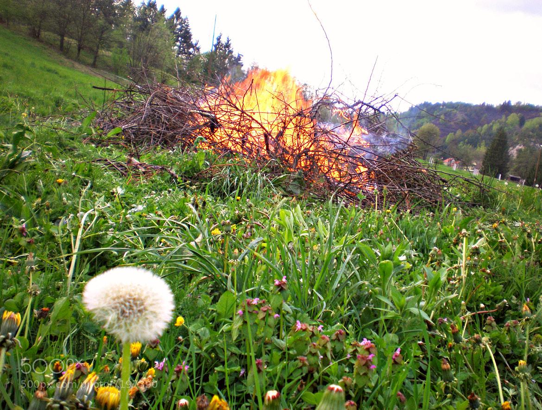 Photograph Burning again by Stefani Wannabe on 500px