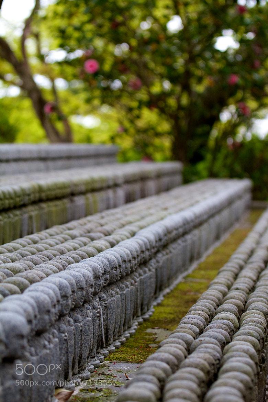 Photograph Many Daibutsu by Antonio Freitas on 500px
