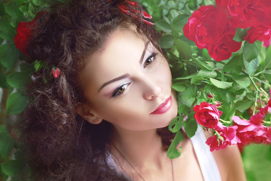 red roses fashion by Olena Zaskochenko on 500px