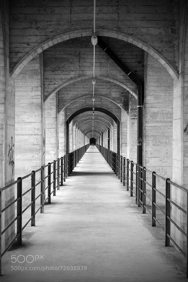 Photograph 146/365: Vanishing Point by Sandro Georgi on 500px