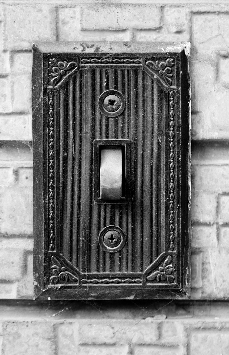 Photograph Finding Home in small details 4/5 by Pietro Fantoni on 500px