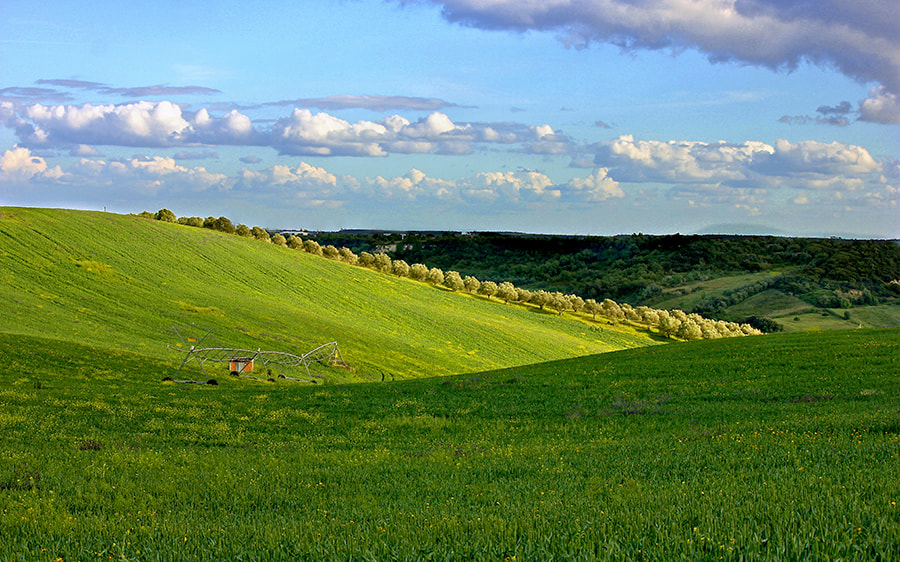 Photograph Green Hill by Rui Mendonza on 500px