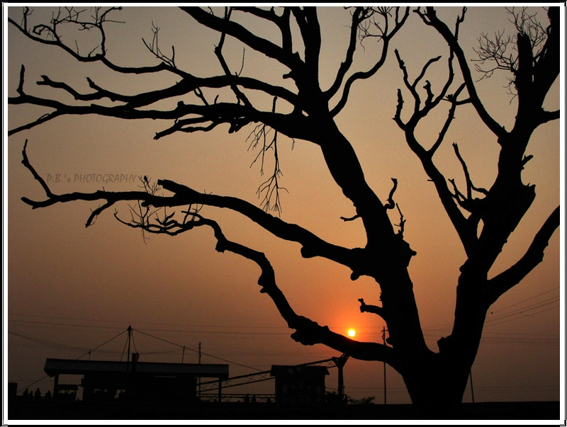 Photograph Sun Set. by PRASUN BISWAS on 500px
