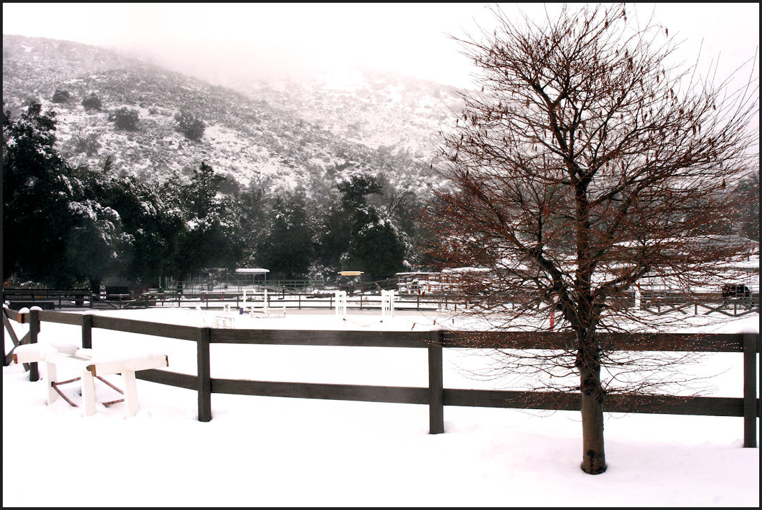 Photograph Winter by Jessie Miller on 500px