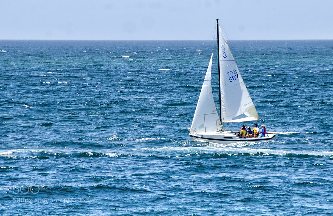 Photograph Sailing in Redondo Beach by Greg McLemore on 500px