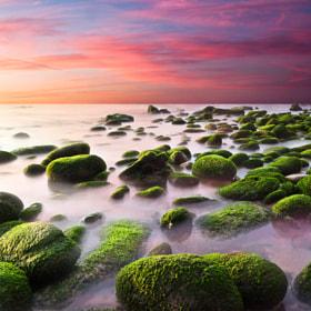Color harmony by Jorge Maia (Jorge_Maia) on 500px.com
