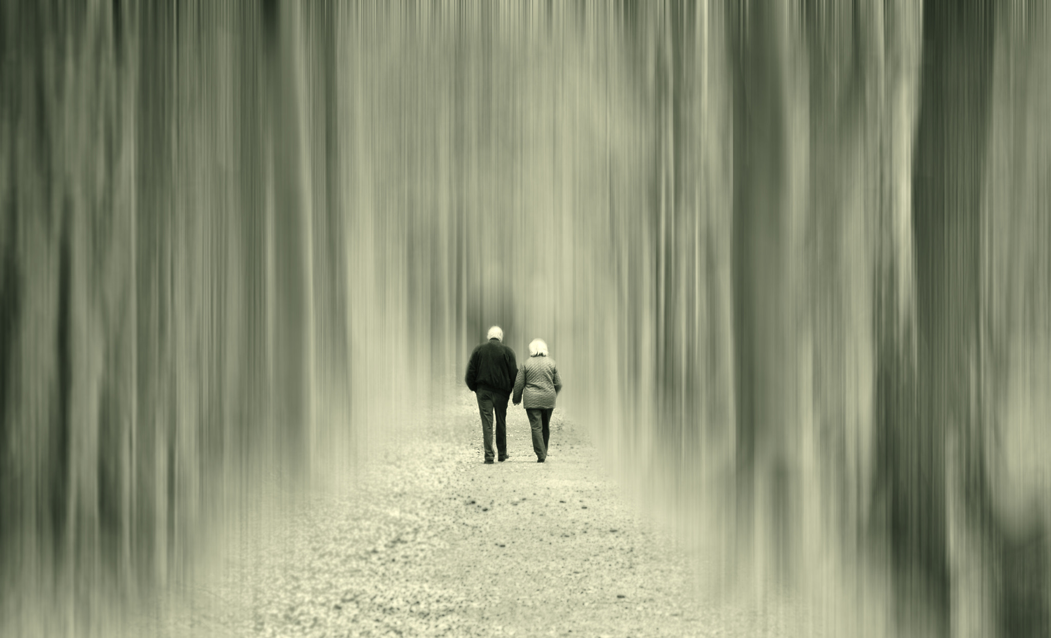 Photograph We walk the path together by pictures of memory on 500px