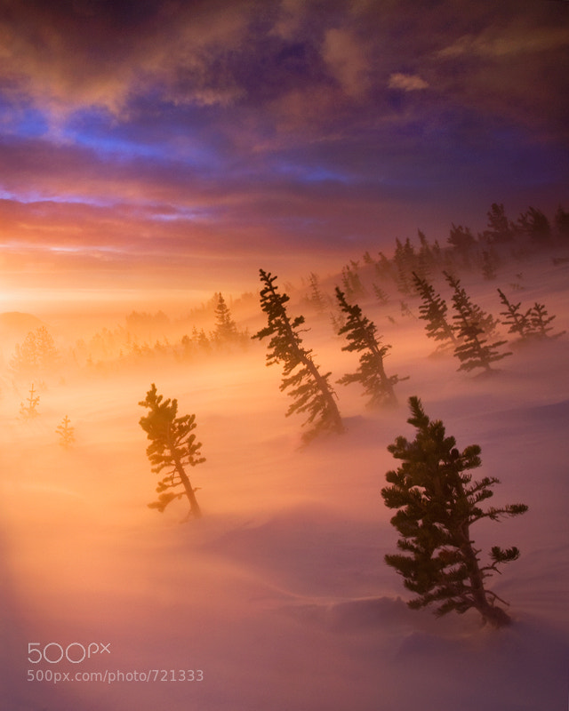Photograph Towards The Light by Scott Hotaling on 500px