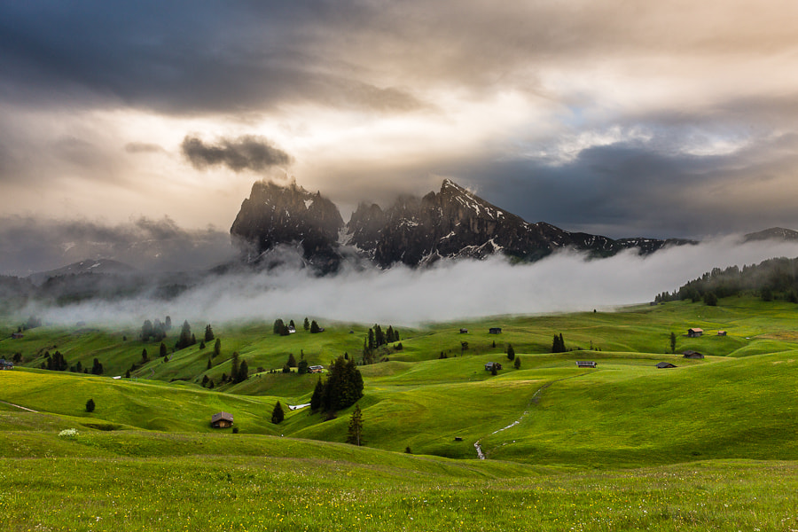 Photograph Fog and Light by Hans Kruse on 500px