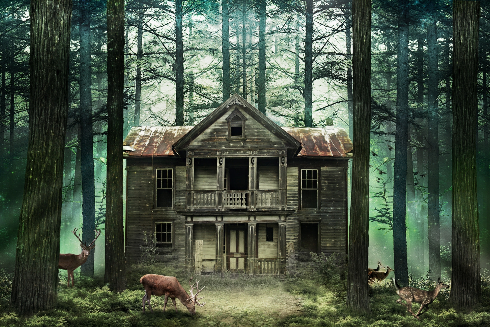 Photograph The old house of the forest by Miguel Angel Oliva on 500px