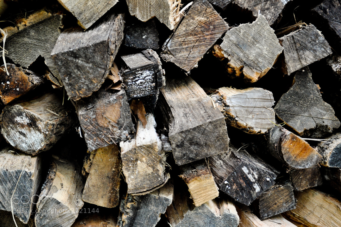 Photograph Wood Pile by Refocus Photography on 500px