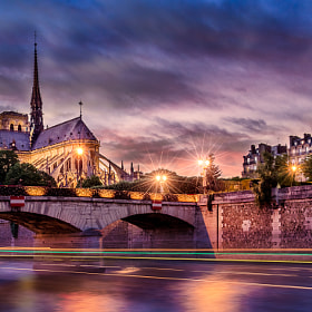 Notre-Dame de Paris - Our Lady of Paris by Sandeep Mathur