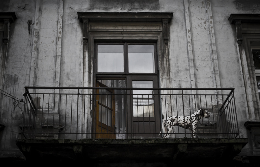 Photograph Spotted in Krakow by Martin Henningsson on 500px