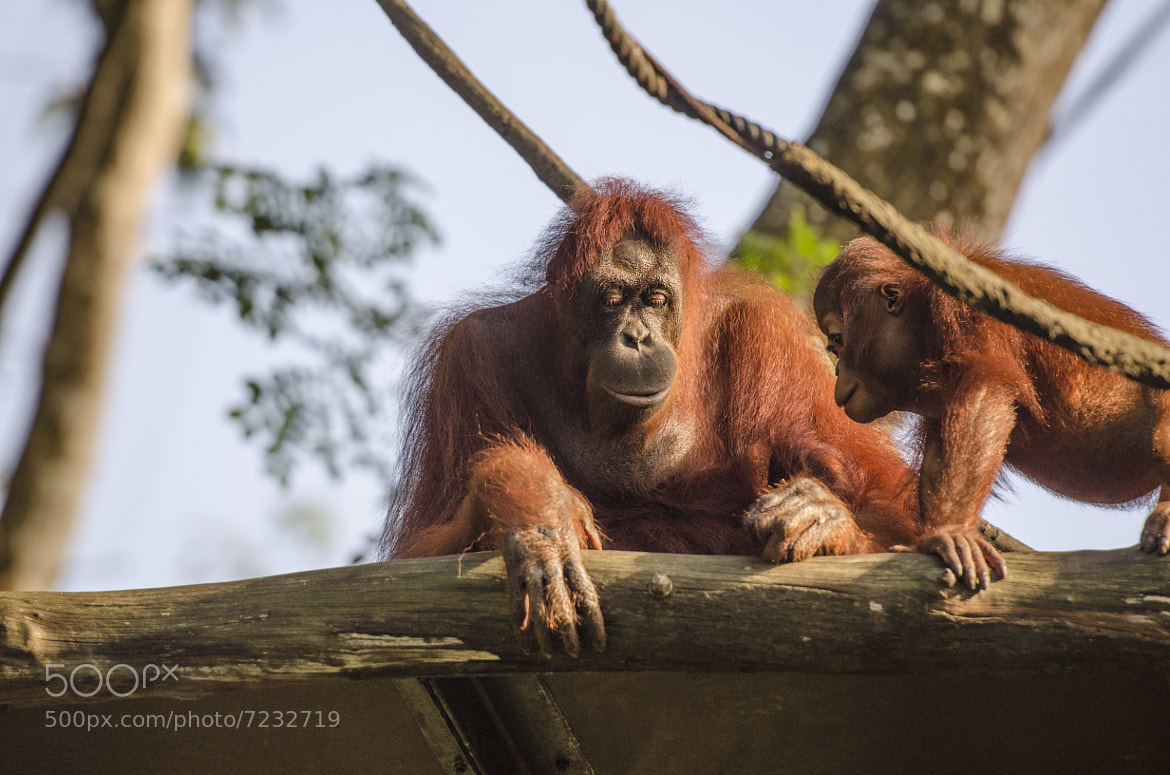 Photograph Mother and Son by Peter Lee on 500px