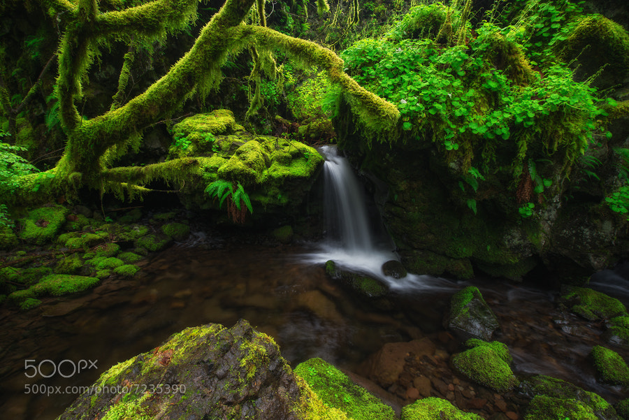Photograph Ernest Falls by Tyson Poeckh on 500px