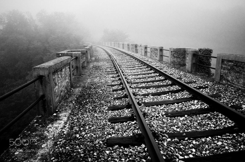 Photograph Dead Railway #6 by Fabio C. Favaloro on 500px
