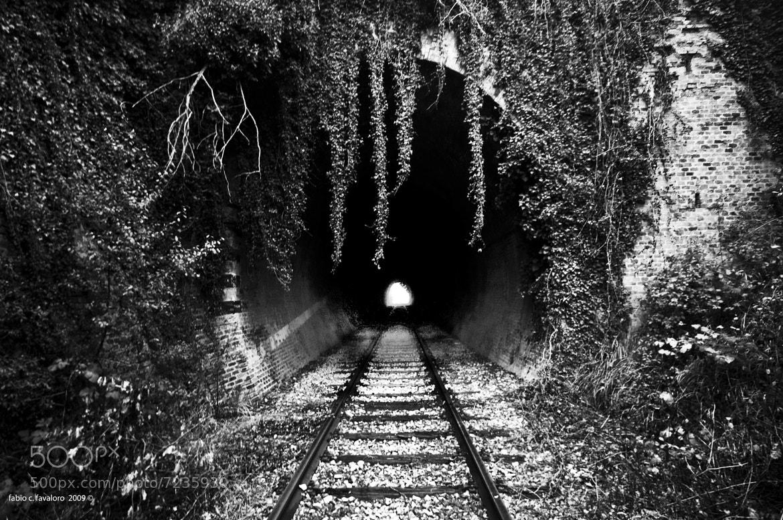 Photograph Dead Railway #2 by Fabio C. Favaloro on 500px