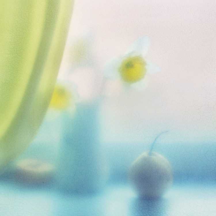 Photograph spring dreamings by Yulia Pletinka on 500px