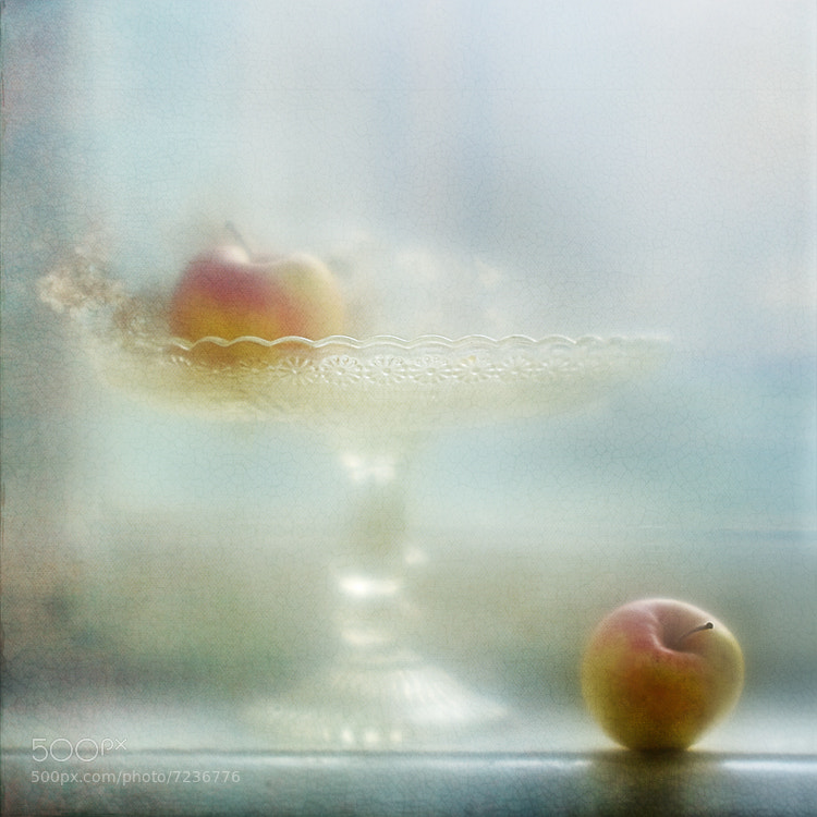 Photograph apple fantasy by Yulia Pletinka on 500px
