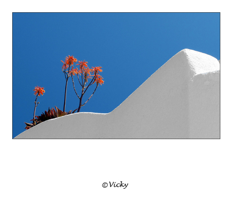 Photograph red, blue and white, Santorini by Vicky Dens on 500px