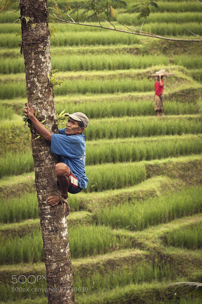 Photograph Old Climber by Afif Farisi on 500px