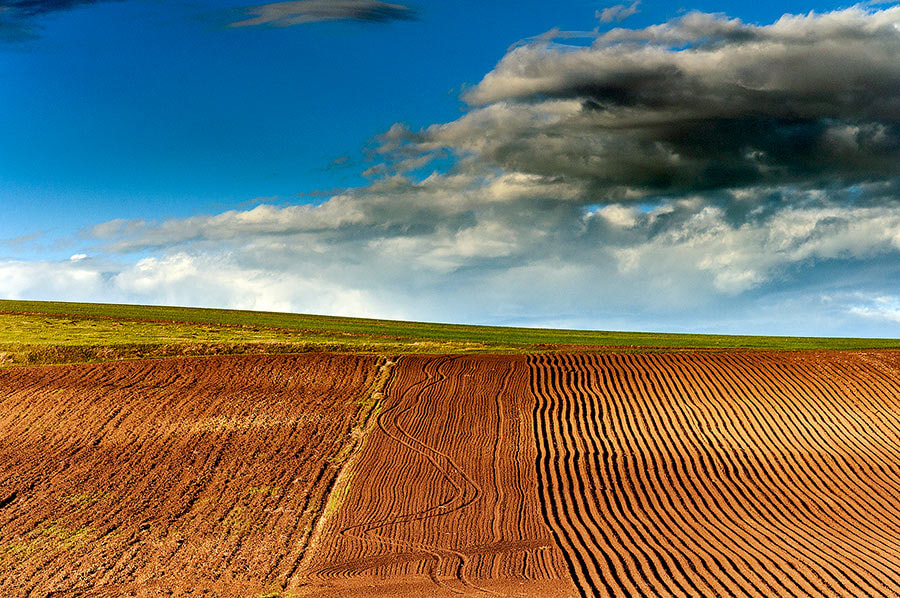 Photograph Plowing by MARIAN Gabriel Constantin on 500px