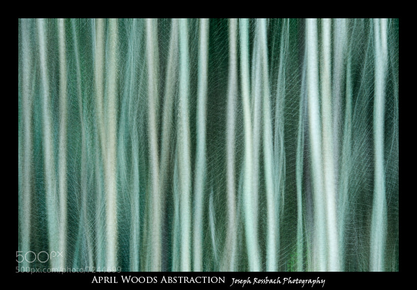 Photograph April Woods Abstraction by Joseph Rossbach on 500px