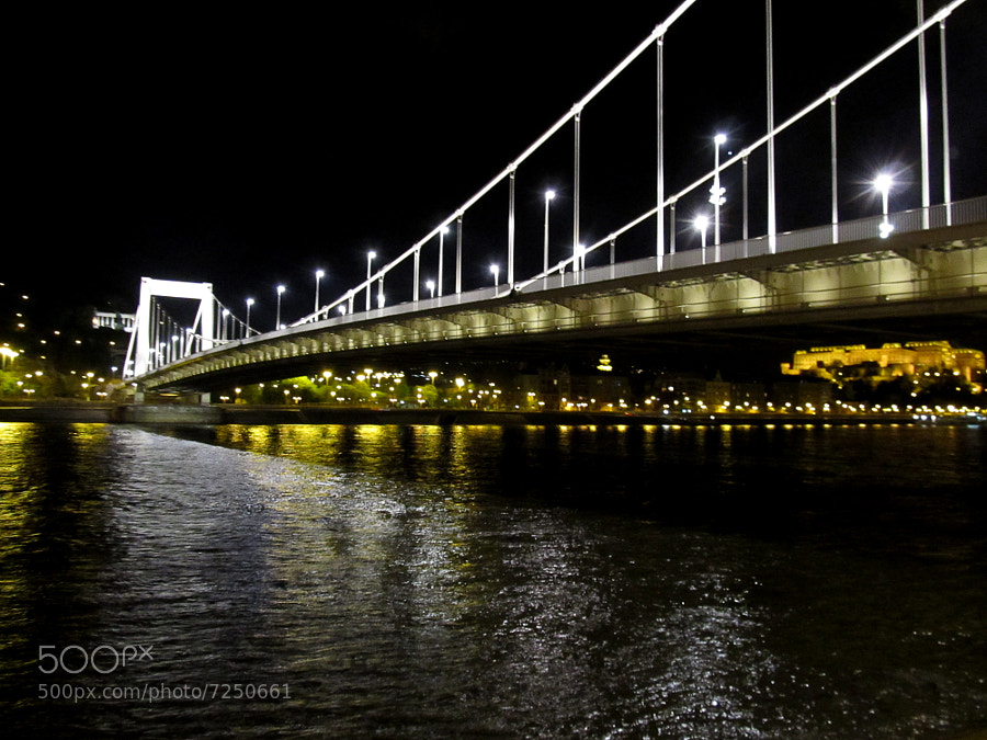 Photograph Bridge by Ivan Andreeski on 500px
